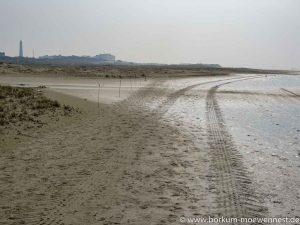 Achtung für Strandläufer - matschiger Weg durch Strandbrüter