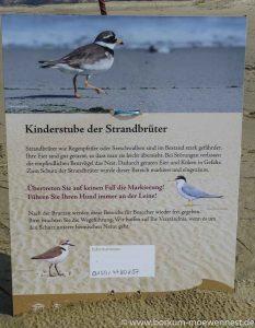 Strandbrüter-Schild (1 von 1)